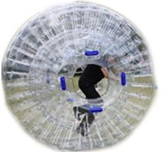 Hamster Ball With Track Rentals